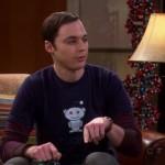 Reddit on The Big Bang Theory